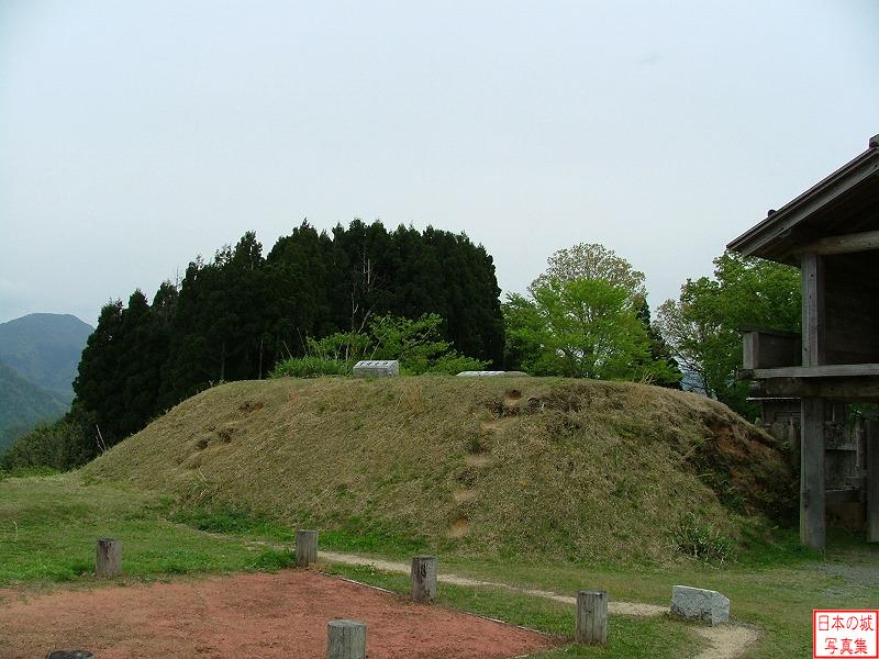 Torigoe Castle Main enclosure
